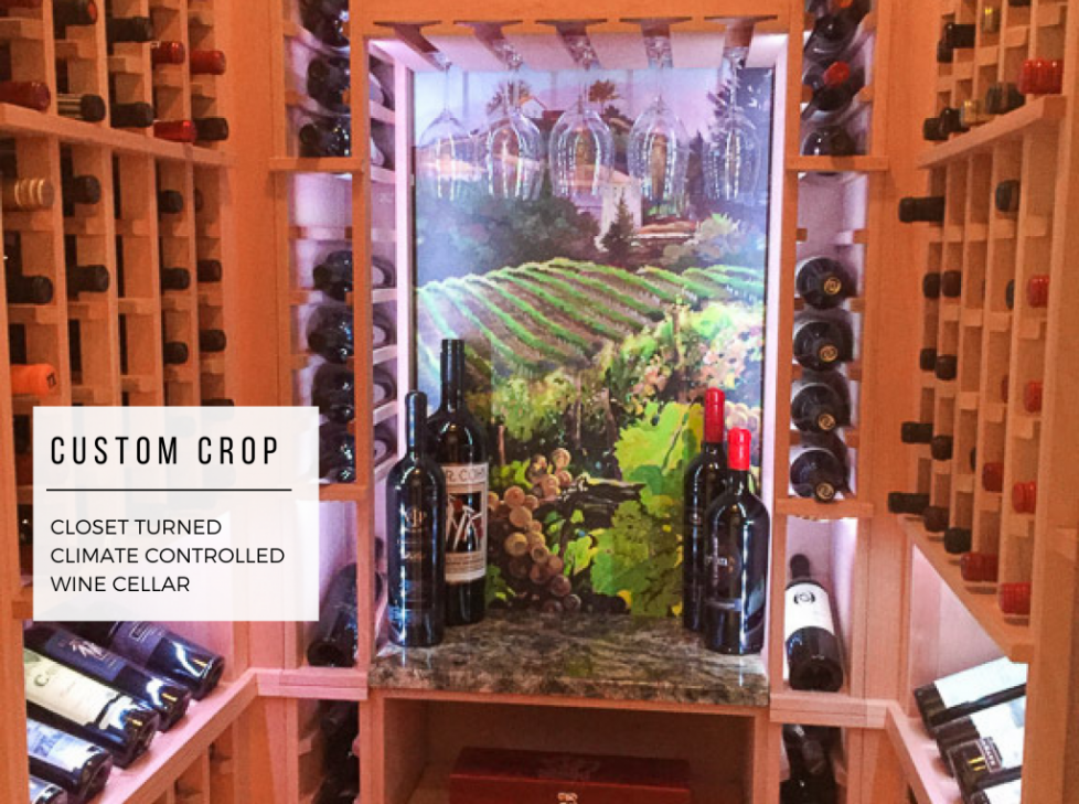 4500 x 3355 Closet _ Wine