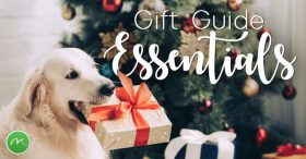 GiftGuideEssentials782x410-2
