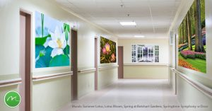 Beautiful murals not only transform memory care hallways, they also serve as landmarks to help residents navigate from one area to another.