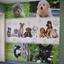 Willowrun Veterinary Clinic
