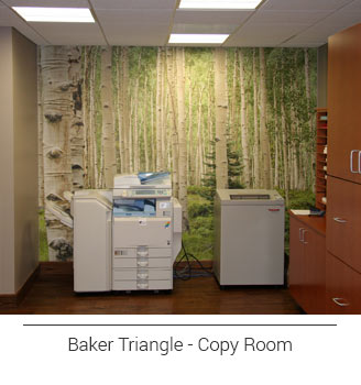birch tree forest mural located in the copy room of Baker Triangle's office, allowing you to escape while making copies