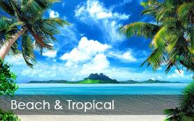 Beach & Tropical Murals