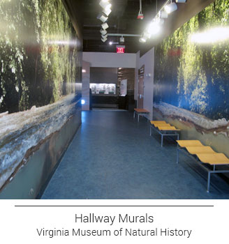 Virginia River landscape custom mural lining the long hallway
