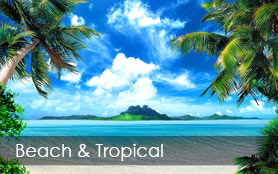 Beach and Tropical Wallpaper Murals