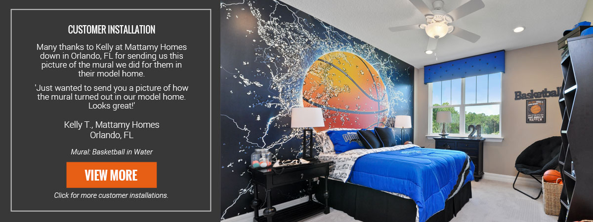 Inspiring Murals for Homes and Businesses