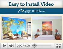 How to install video