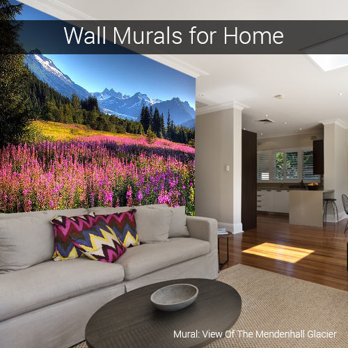 Wall murals for homes